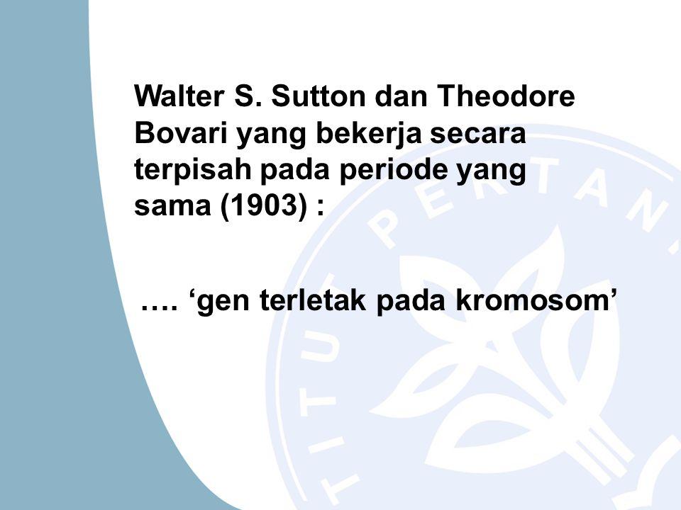 Walter S. Sutton dan Theodore Bovari yang bekerja secara terpisah pada periode yang sama (1903) :