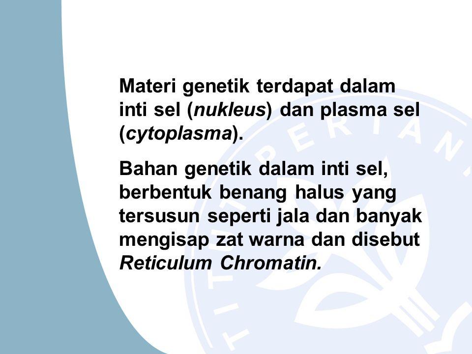 Materi genetik terdapat dalam inti sel (nukleus) dan plasma sel (cytoplasma).
