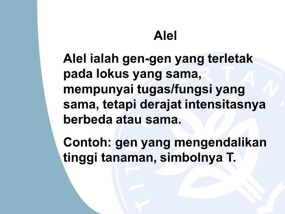 Alel Alel ialah gen-gen yang terletak pada lokus yang sama, mempunyai tugas/fungsi yang sama, tetapi derajat intensitasnya berbeda atau sama.