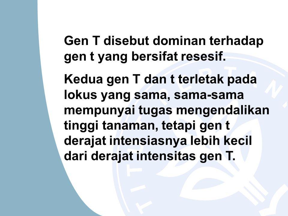 Gen T disebut dominan terhadap gen t yang bersifat resesif.