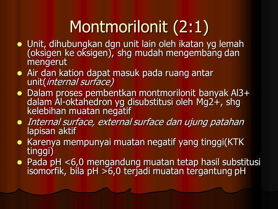 Montmorilonit (2:1) Unit, dihubungkan dgn unit lain oleh ikatan yg lemah (oksigen ke oksigen), shg mudah mengembang dan mengerut.