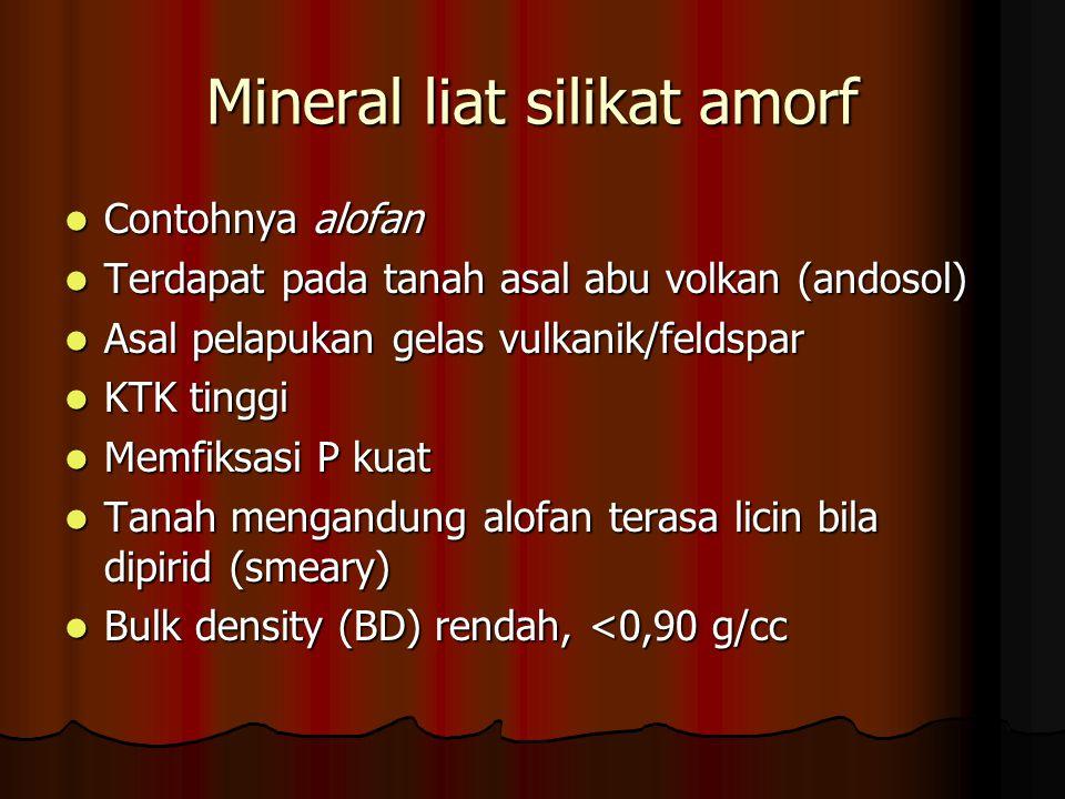 Mineral liat silikat amorf