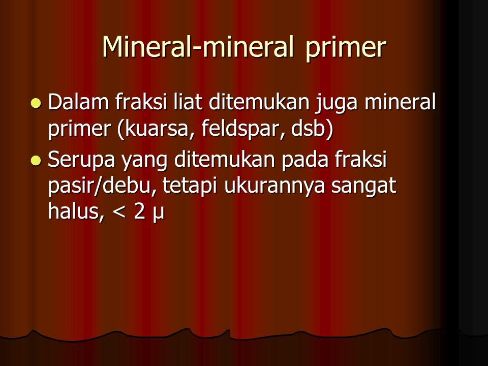 Mineral-mineral primer