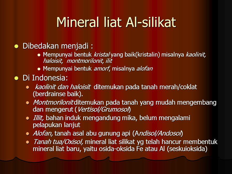 Mineral liat Al-silikat