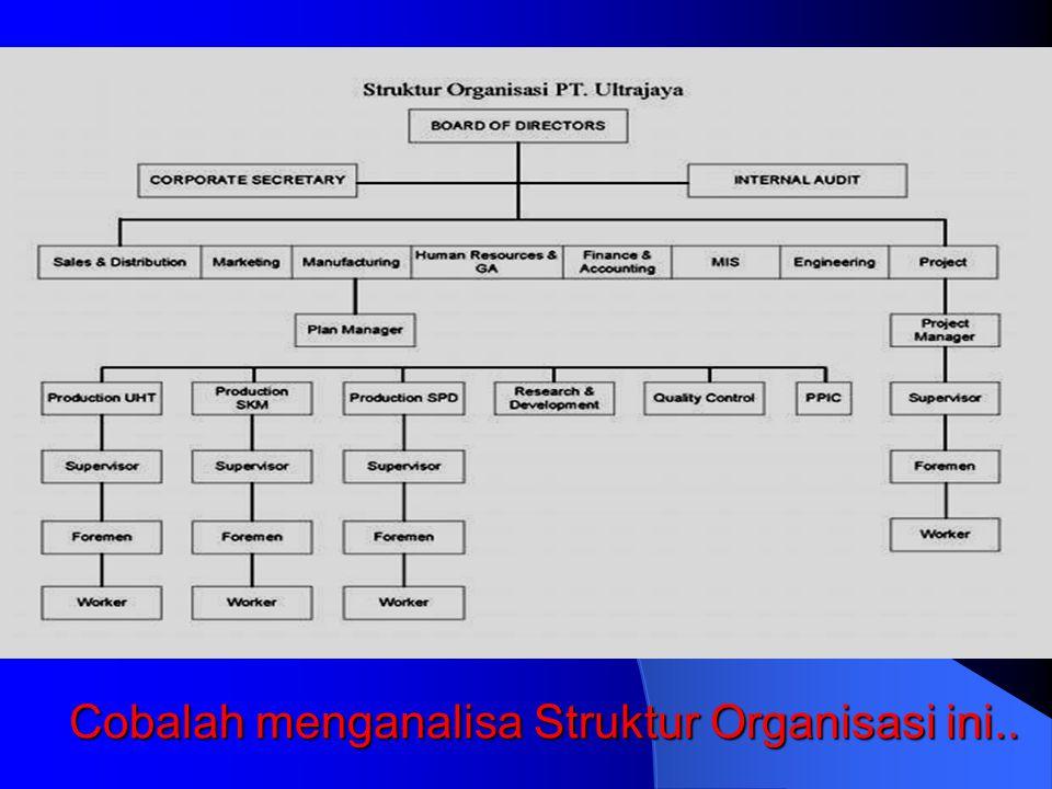Cobalah menganalisa Struktur Organisasi ini..
