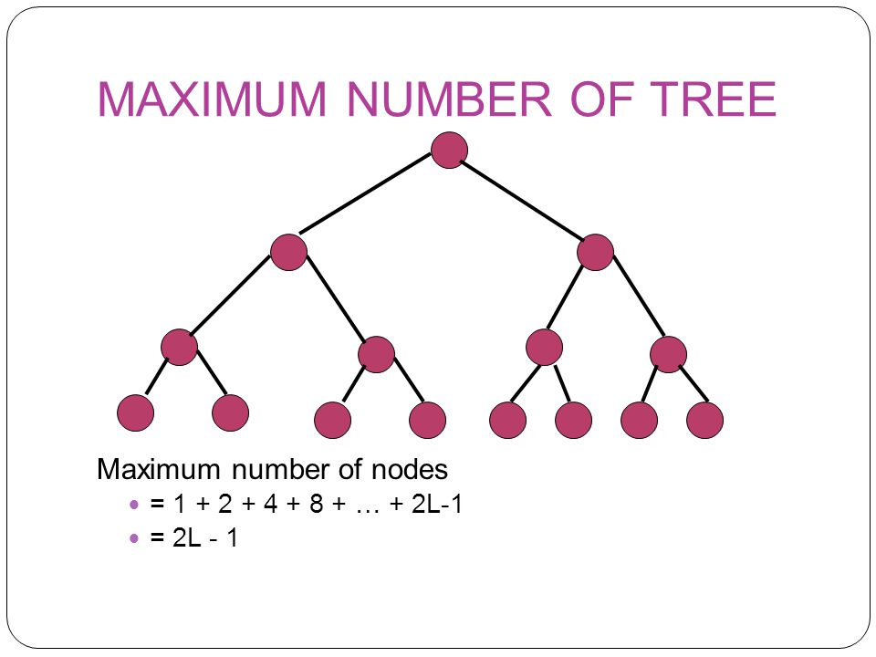 MAXIMUM NUMBER OF TREE Maximum number of nodes