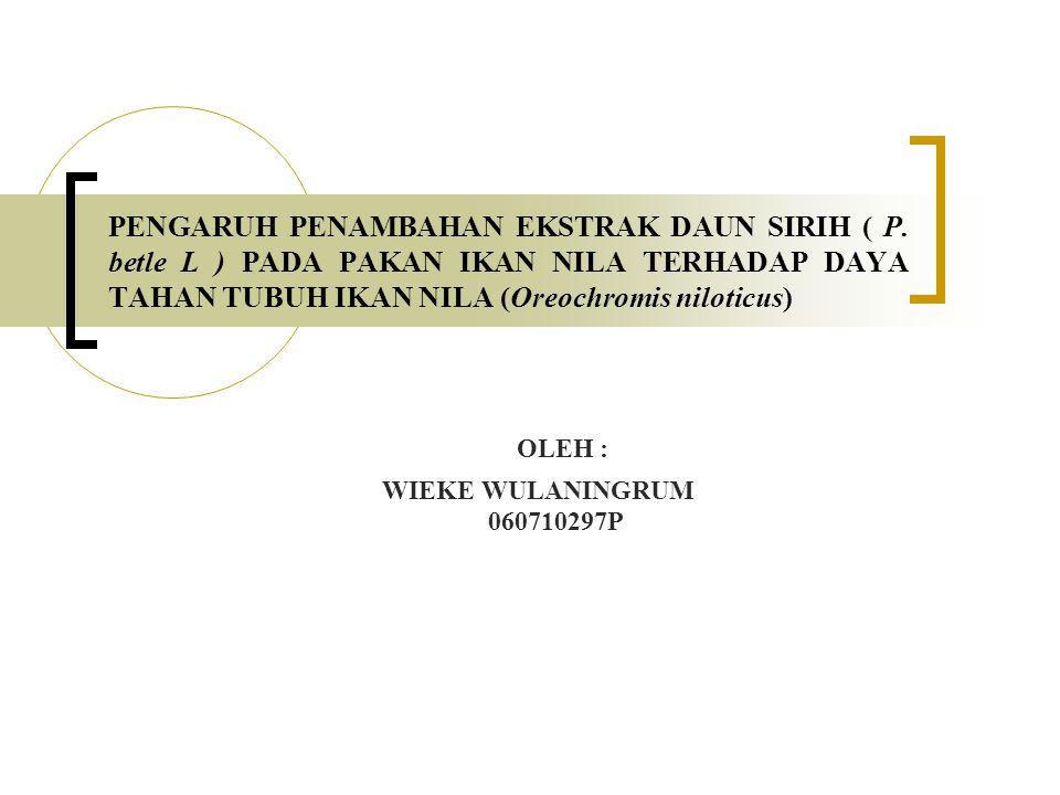 OLEH : WIEKE WULANINGRUM 060710297P