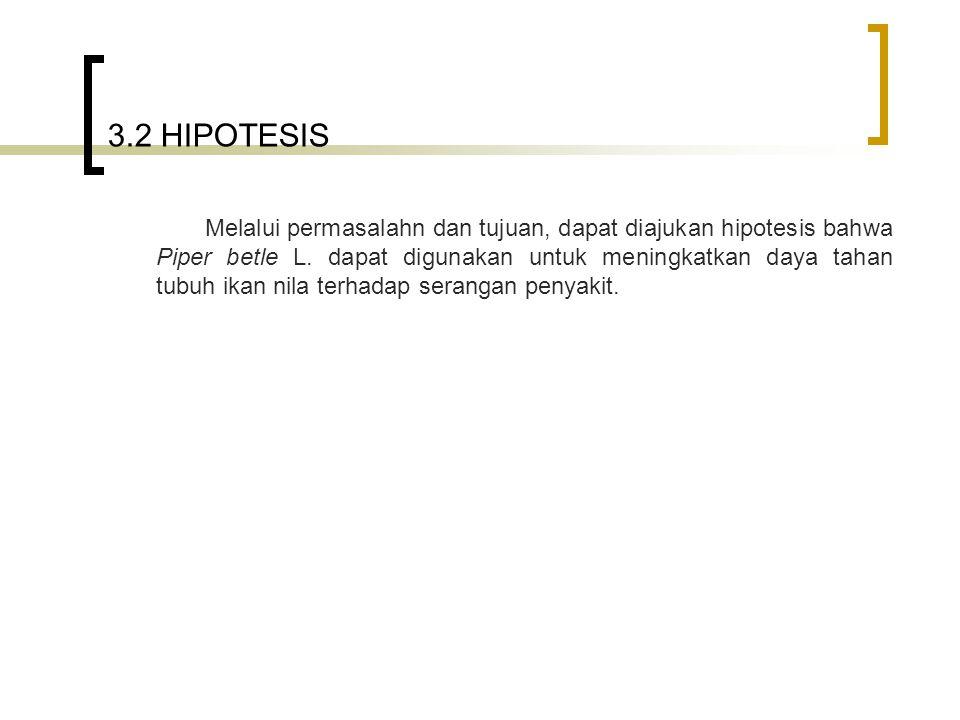 3.2 HIPOTESIS