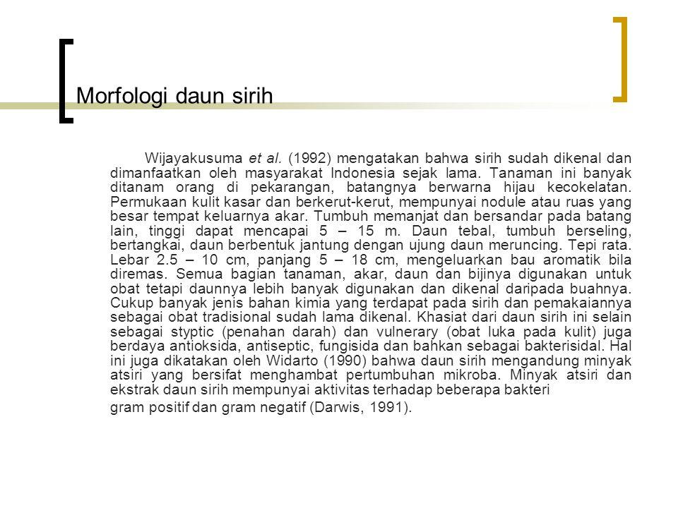 Morfologi daun sirih
