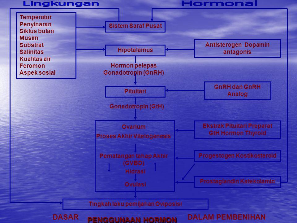 Lingkungan Hormonal DASAR PENGGUNAAN HORMON DALAM PEMBENIHAN