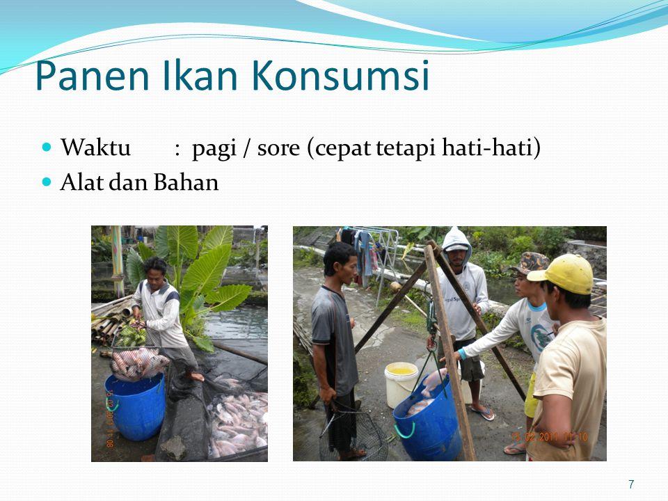 Panen Ikan Konsumsi Waktu : pagi / sore (cepat tetapi hati-hati)