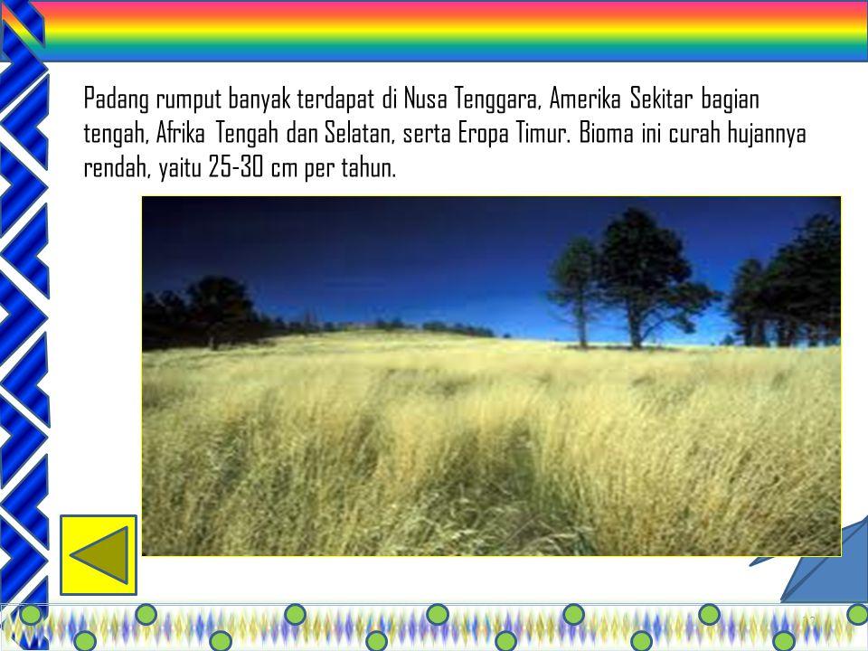 Padang rumput banyak terdapat di Nusa Tenggara, Amerika Sekitar bagian tengah, Afrika Tengah dan Selatan, serta Eropa Timur.