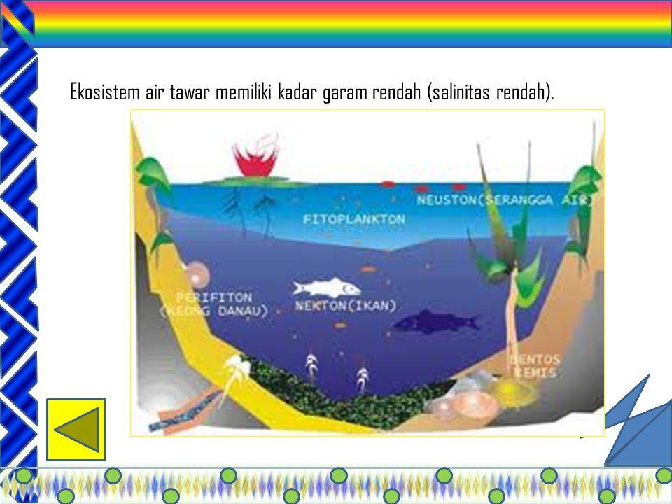 Ekosistem air tawar memiliki kadar garam rendah (salinitas rendah).