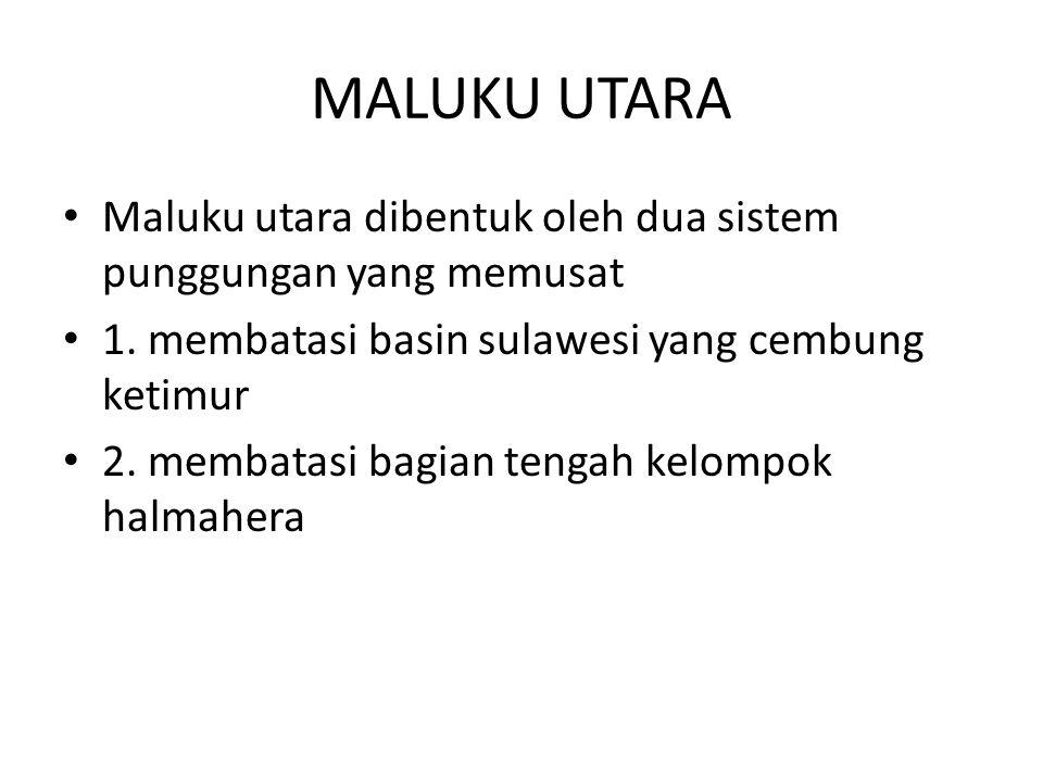 MALUKU UTARA Maluku utara dibentuk oleh dua sistem punggungan yang memusat. 1. membatasi basin sulawesi yang cembung ketimur.