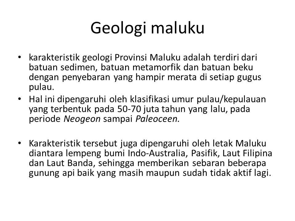 Geologi maluku