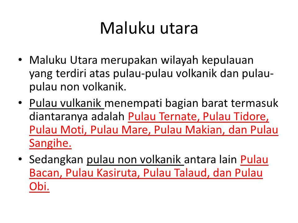 Maluku utara Maluku Utara merupakan wilayah kepulauan yang terdiri atas pulau-pulau volkanik dan pulau-pulau non volkanik.