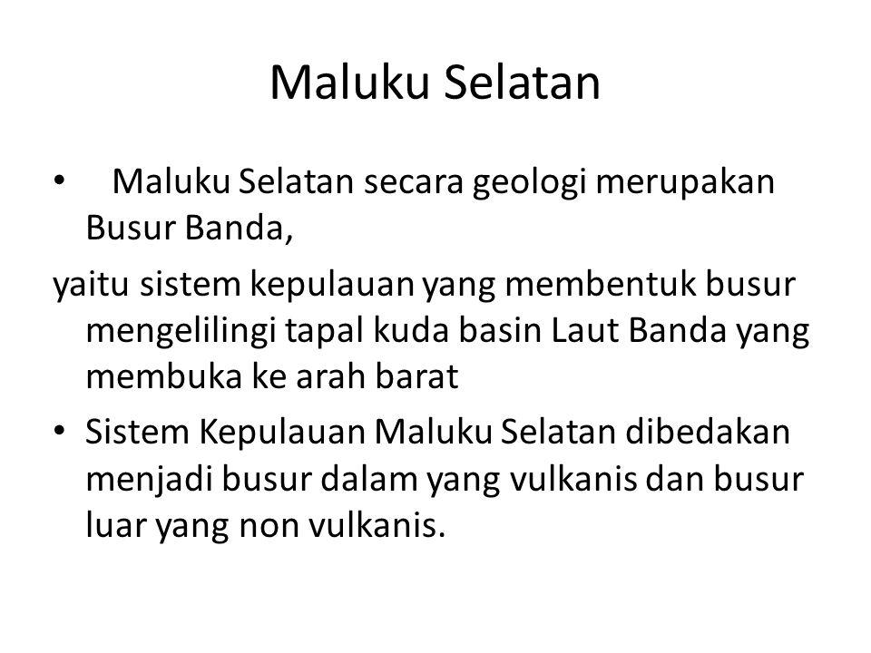 Maluku Selatan Maluku Selatan secara geologi merupakan Busur Banda,