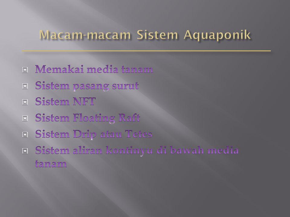 Macam-macam Sistem Aquaponik