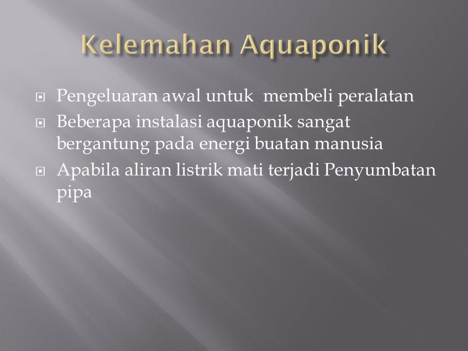 Kelemahan Aquaponik Pengeluaran awal untuk membeli peralatan