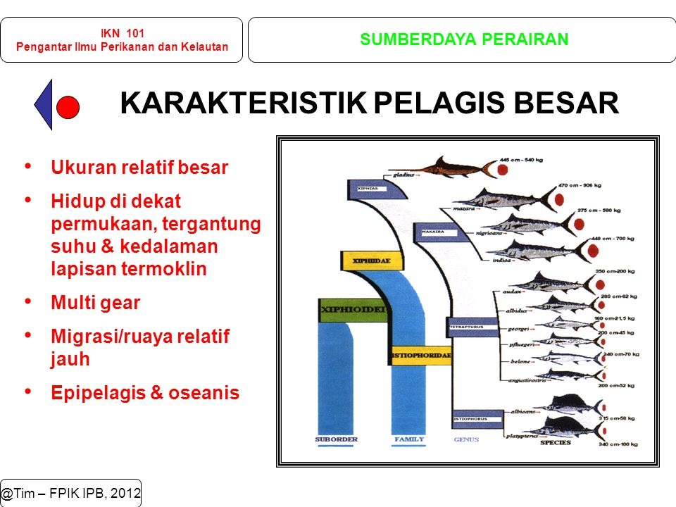 Pengantar Ilmu Perikanan dan Kelautan