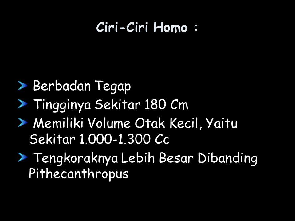 Ciri-Ciri Homo : Berbadan Tegap. Tingginya Sekitar 180 Cm. Memiliki Volume Otak Kecil, Yaitu Sekitar 1.000-1.300 Cc.