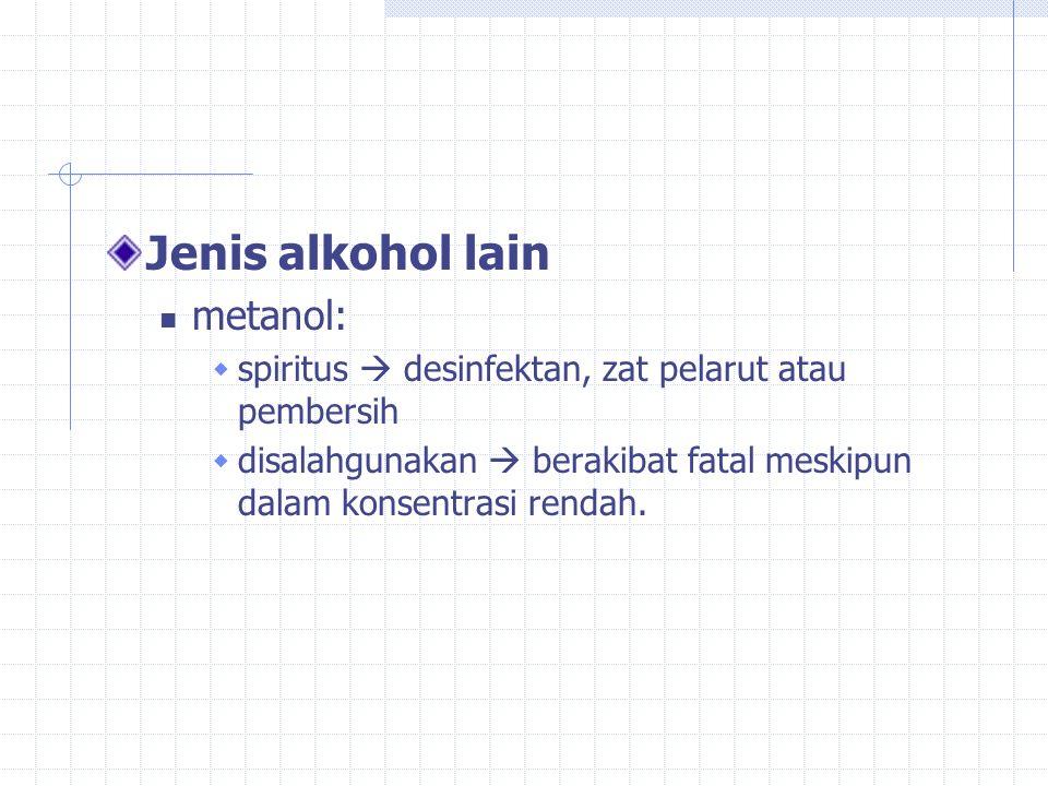 Jenis alkohol lain metanol: