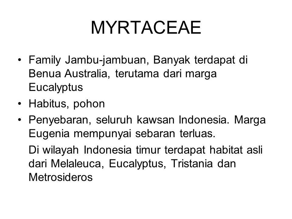 MYRTACEAE Family Jambu-jambuan, Banyak terdapat di Benua Australia, terutama dari marga Eucalyptus.