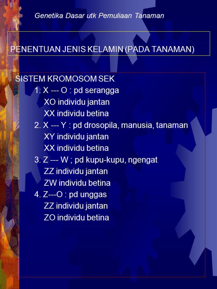 PENENTUAN JENIS KELAMIN (PADA TANAMAN)