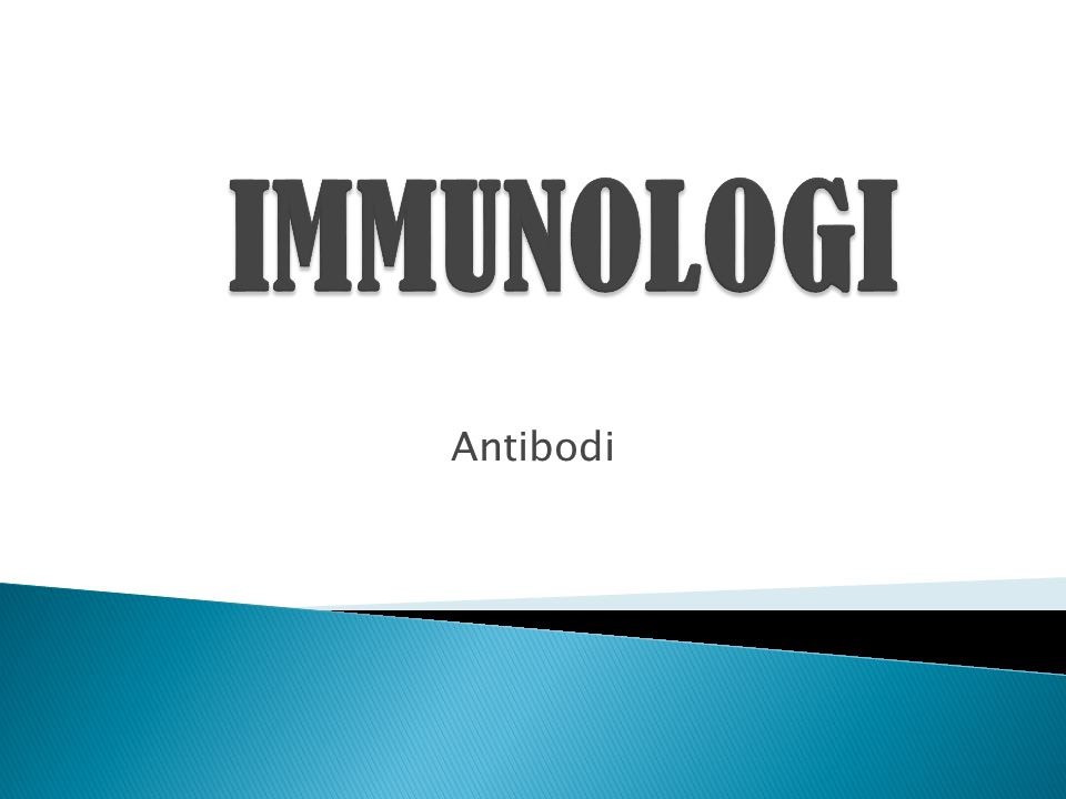 IMMUNOLOGI Antibodi
