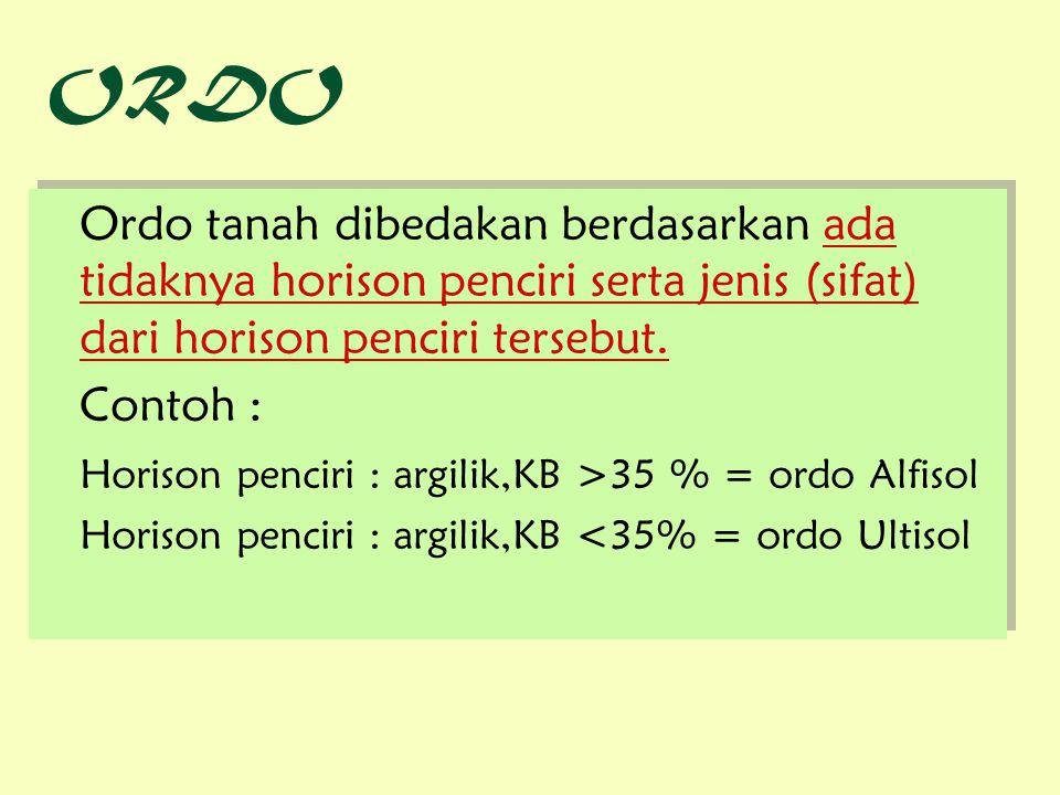 ORDO Ordo tanah dibedakan berdasarkan ada tidaknya horison penciri serta jenis (sifat) dari horison penciri tersebut.