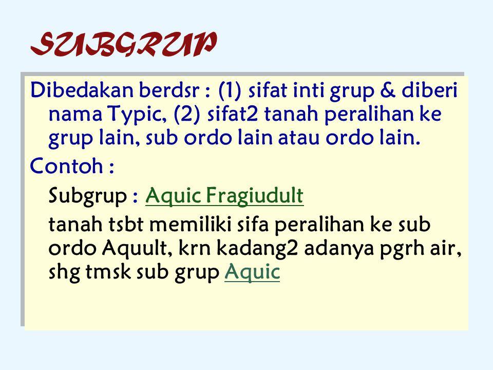 SUBGRUP Dibedakan berdsr : (1) sifat inti grup & diberi nama Typic, (2) sifat2 tanah peralihan ke grup lain, sub ordo lain atau ordo lain.