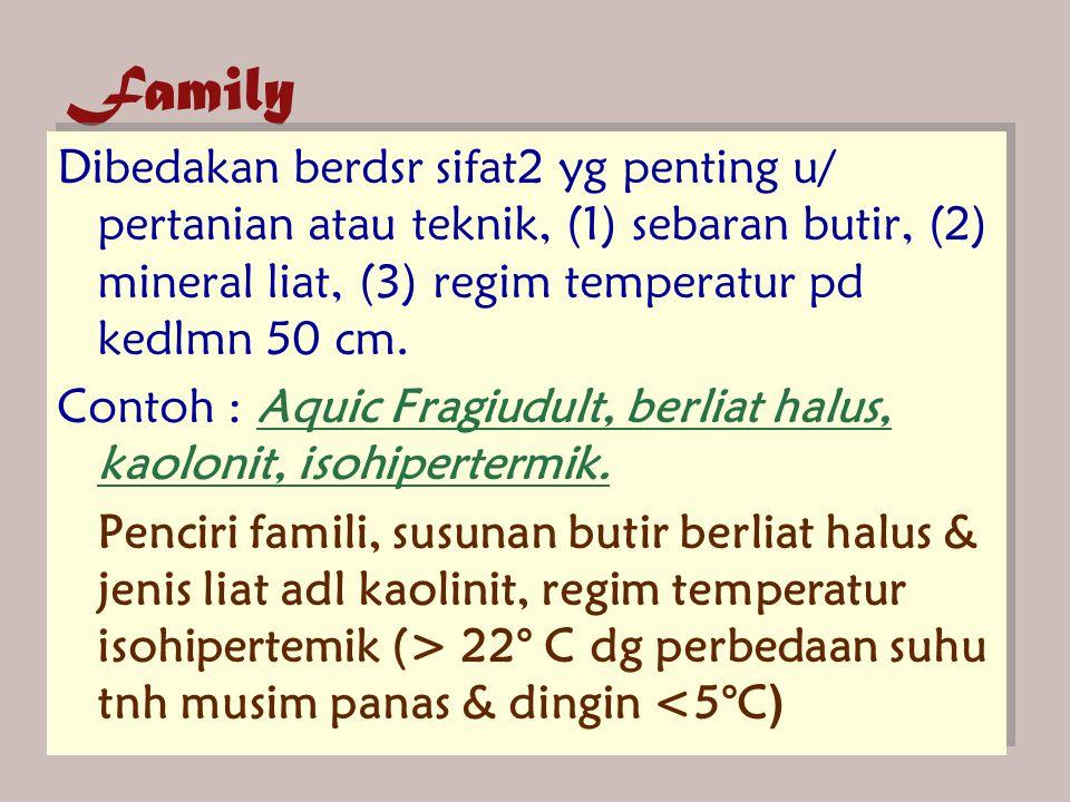 Family Dibedakan berdsr sifat2 yg penting u/ pertanian atau teknik, (1) sebaran butir, (2) mineral liat, (3) regim temperatur pd kedlmn 50 cm.