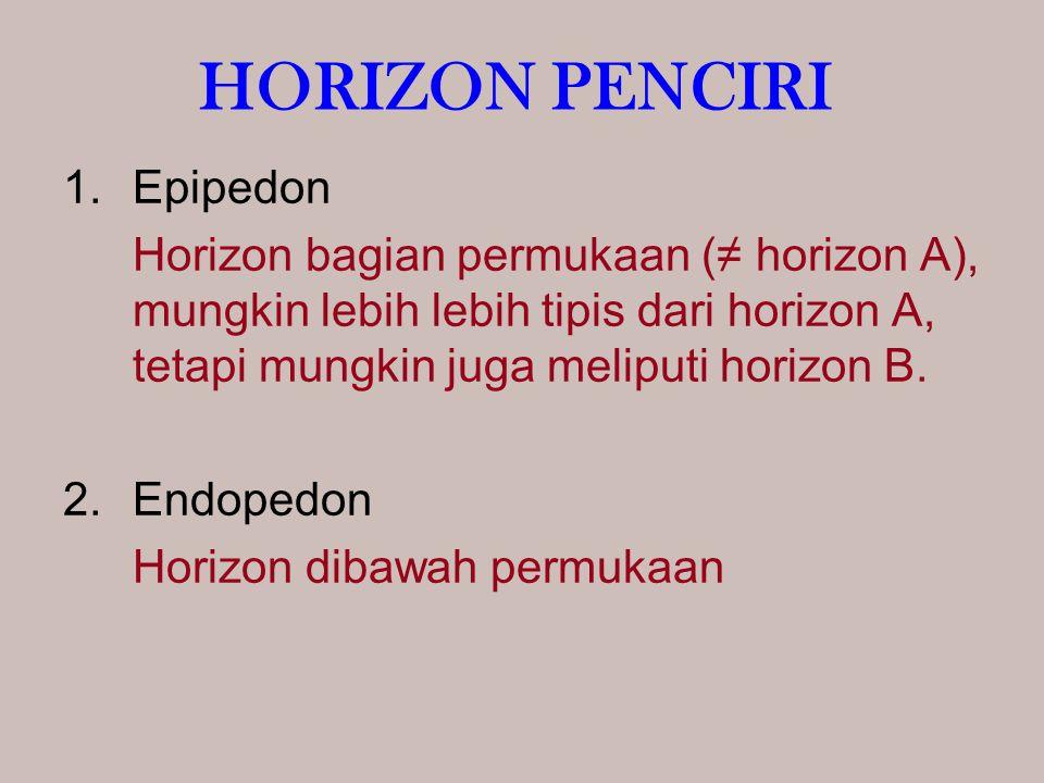 HORIZON PENCIRI Epipedon
