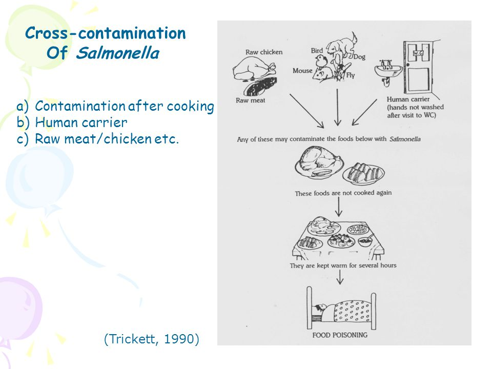 Cross-contamination Of Salmonella