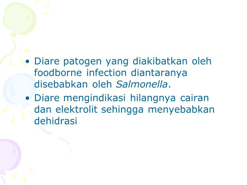 Diare patogen yang diakibatkan oleh foodborne infection diantaranya disebabkan oleh Salmonella.