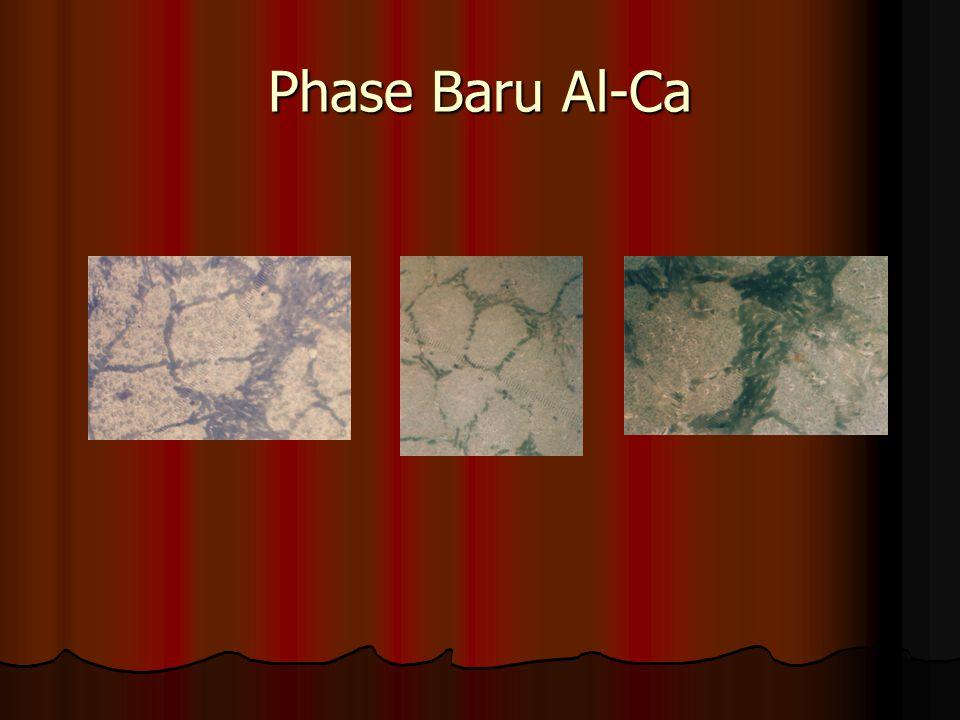 Phase Baru Al-Ca