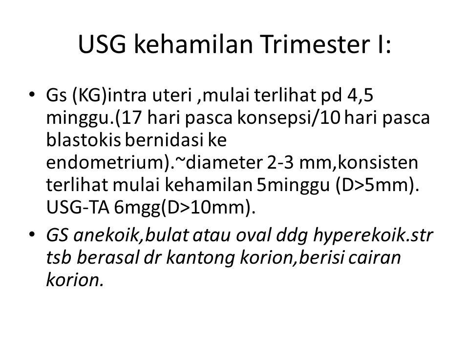 USG kehamilan Trimester I: