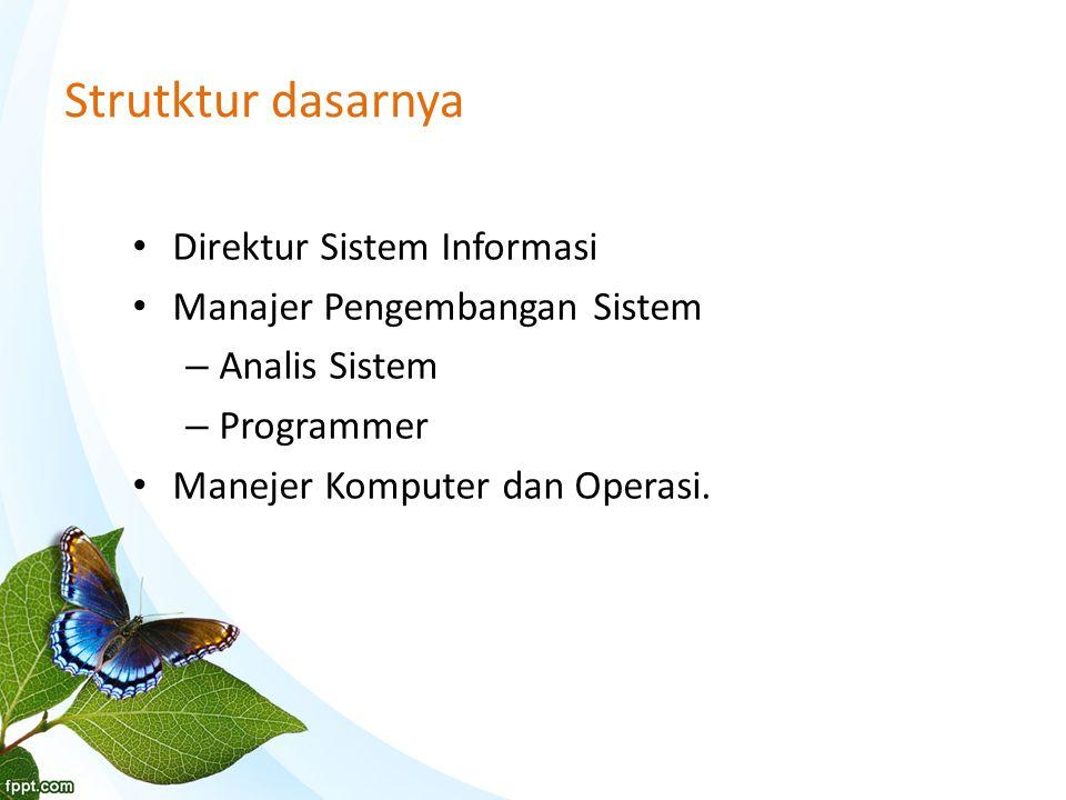 Strutktur dasarnya Direktur Sistem Informasi