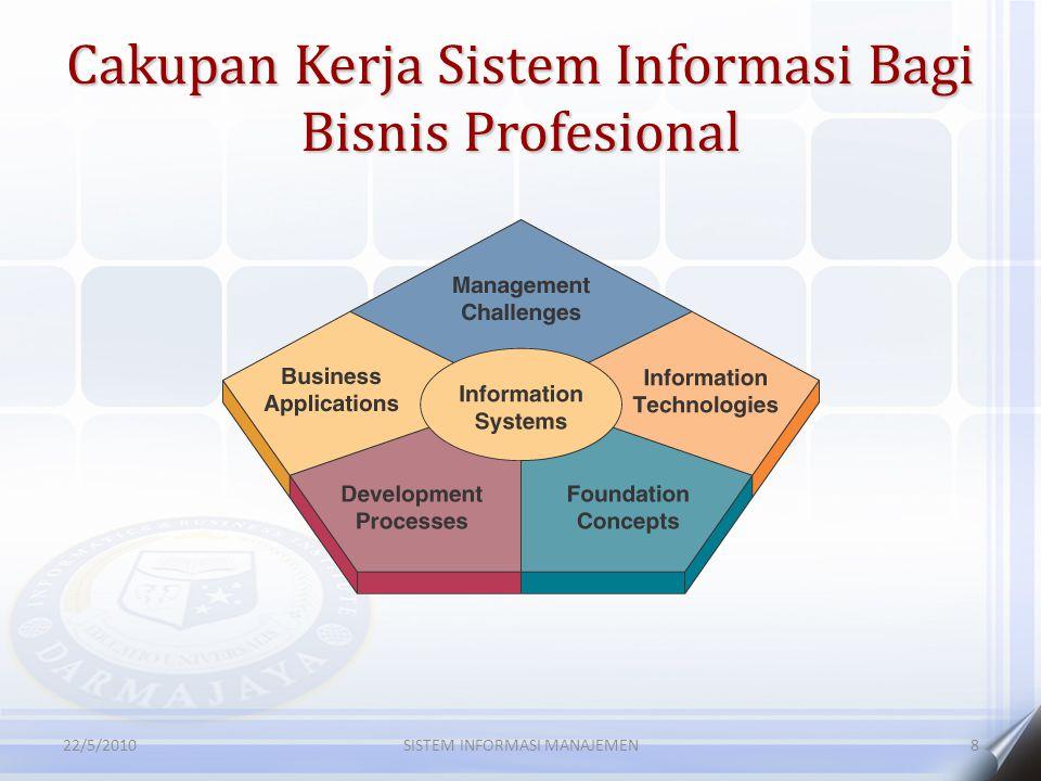 Cakupan Kerja Sistem Informasi Bagi Bisnis Profesional