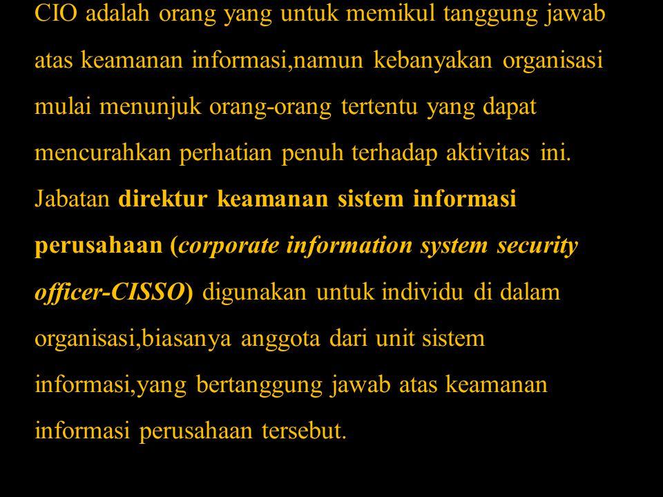 CIO adalah orang yang untuk memikul tanggung jawab atas keamanan informasi,namun kebanyakan organisasi mulai menunjuk orang-orang tertentu yang dapat mencurahkan perhatian penuh terhadap aktivitas ini.
