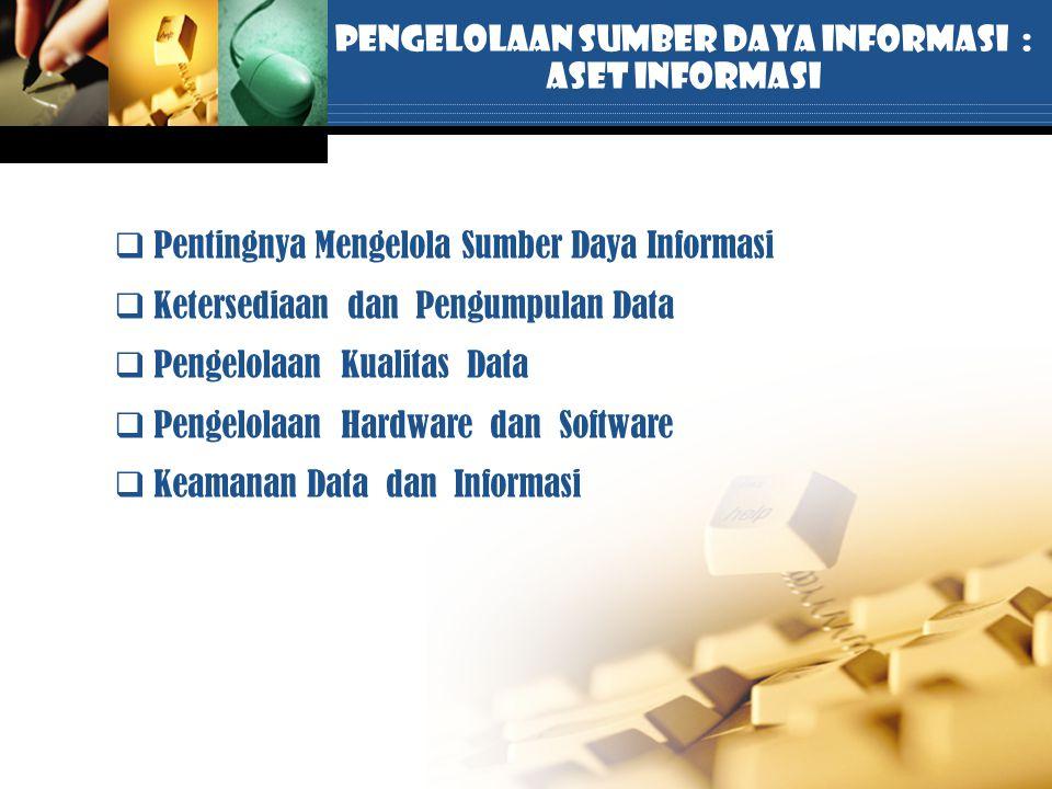 Pengelolaan Sumber Daya Informasi :