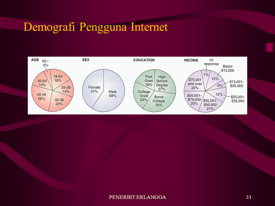 Demografi Pengguna Internet