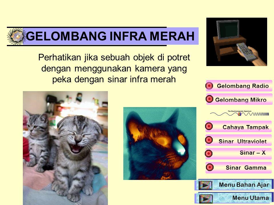 GELOMBANG INFRA MERAH Perhatikan jika sebuah objek di potret dengan menggunakan kamera yang peka dengan sinar infra merah.