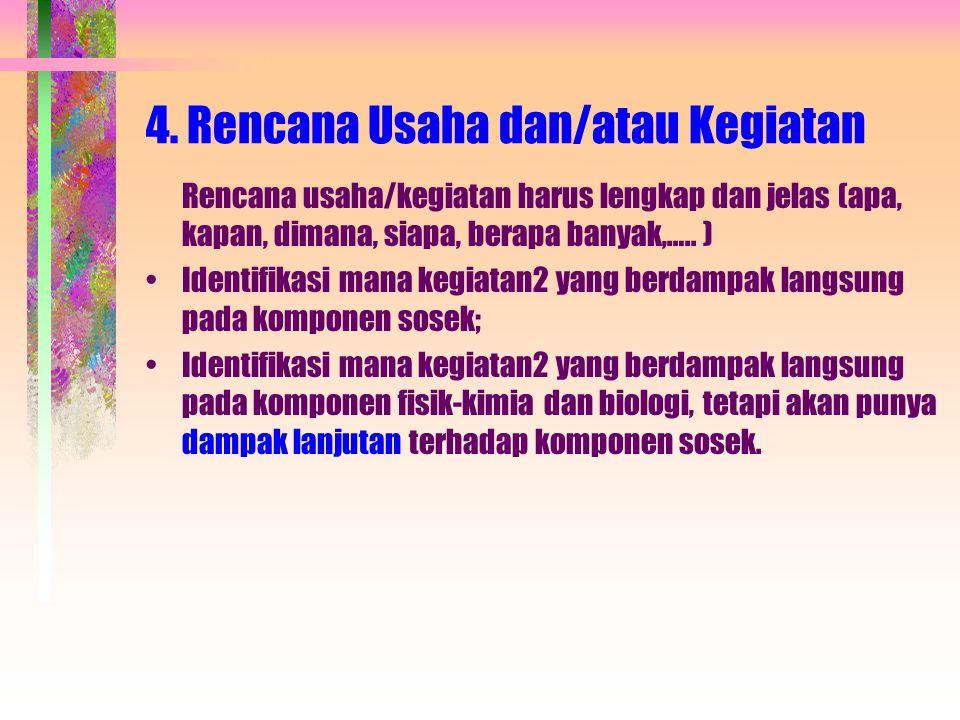 4. Rencana Usaha dan/atau Kegiatan