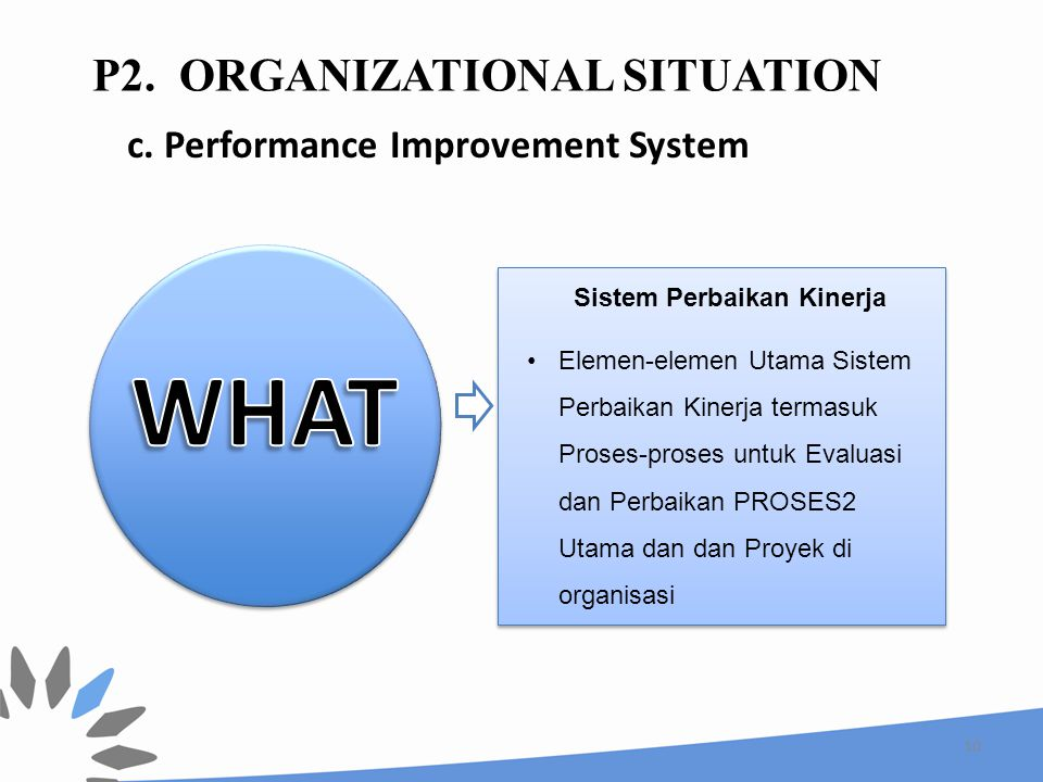 P2. Organizational Situation