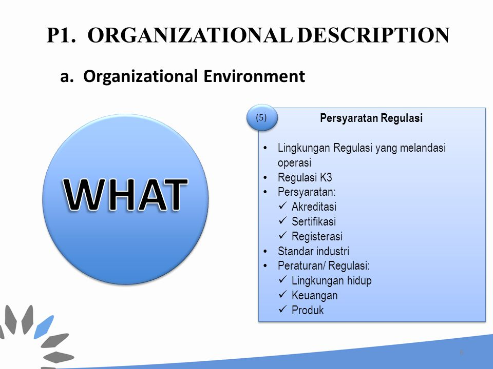 P1. Organizational Description