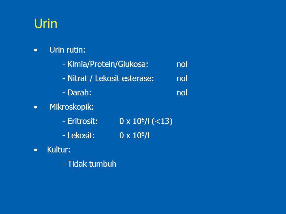 Urin Urin rutin: - Kimia/Protein/Glukosa: nol