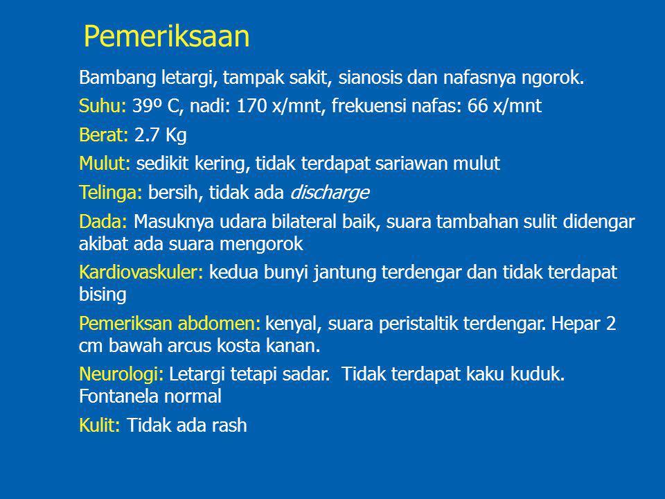 Pemeriksaan Bambang letargi, tampak sakit, sianosis dan nafasnya ngorok. Suhu: 39º C, nadi: 170 x/mnt, frekuensi nafas: 66 x/mnt.