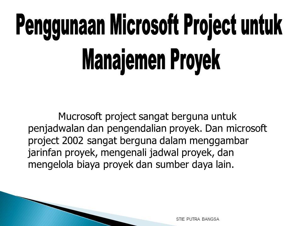 Penggunaan Microsoft Project untuk