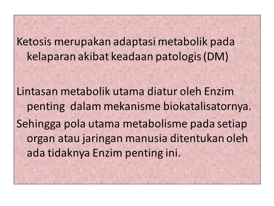 Ketosis merupakan adaptasi metabolik pada kelaparan akibat keadaan patologis (DM) Lintasan metabolik utama diatur oleh Enzim penting dalam mekanisme biokatalisatornya.